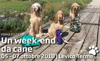 Week end da Cane